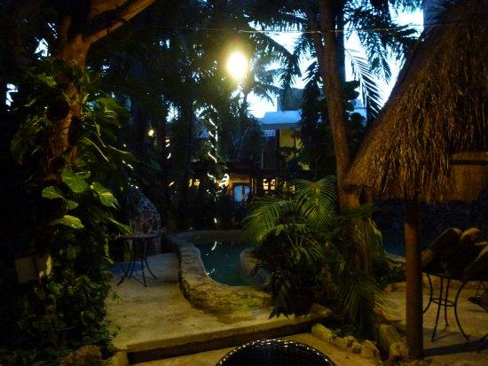 Zdjęcie Hotel Playa del Karma