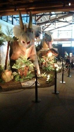 Dubuque, IA: Current dinosaur exhibit