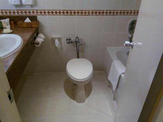 Hilton Nairobi: Standard Toilet