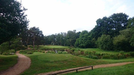 Pulborough, UK: Hole 15, mooie par 3