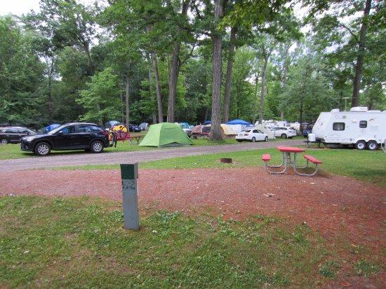 North Beach Campground照片
