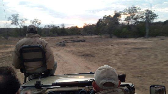 Balule Private Game Reserve, Sudáfrica: 20160703_064404_large.jpg