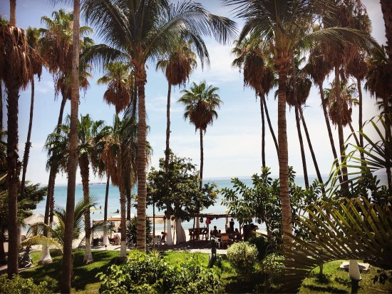 La Concha Beach Resort: photo3.jpg