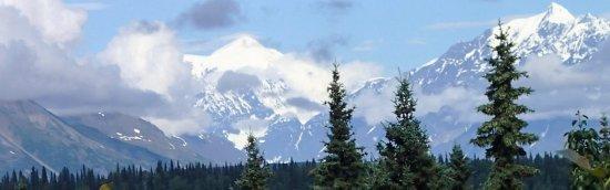 Mt. McKinley Princess Wilderness Lodge: Magnificent view