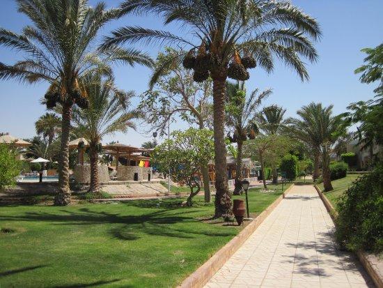 Movie Gate Golden Beach Hotel : Immaculate gardens
