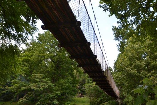 The Little River Railroad and Lumber Company Museum : Swinging Bridge