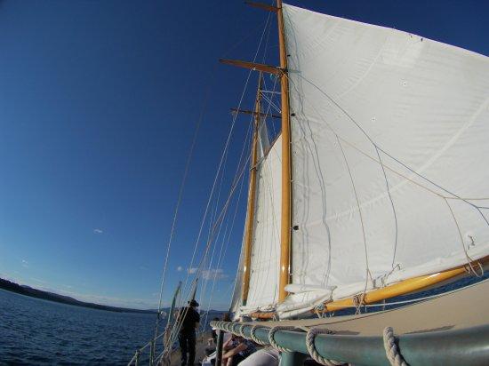 Rockport, ME: Sail Heron