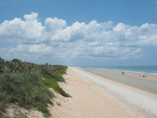 Turtle Mound National Historic Site: the beach line
