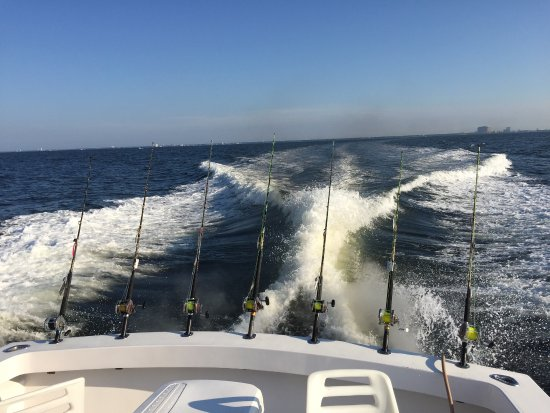 Fish-Finder Charters