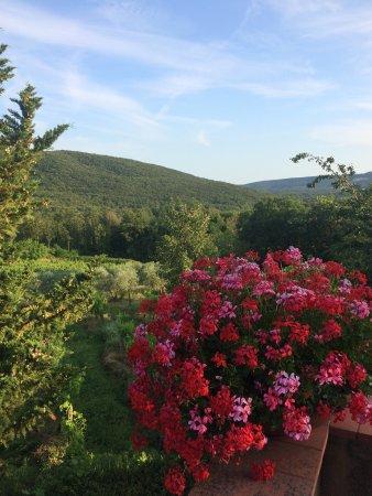 Casolare di Libbiano: photo0.jpg