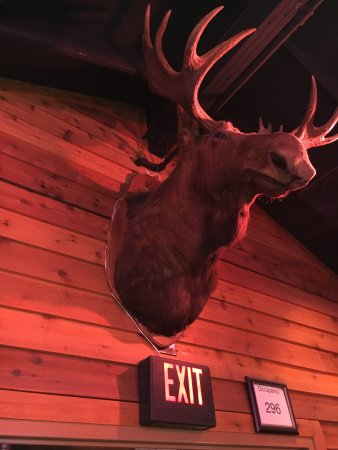 20160224 191124 large jpg picture of texas roadhouse cheyenne rh tripadvisor com sg