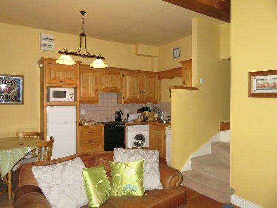 County Kilkenny, İrlanda: Well furnished kitchen