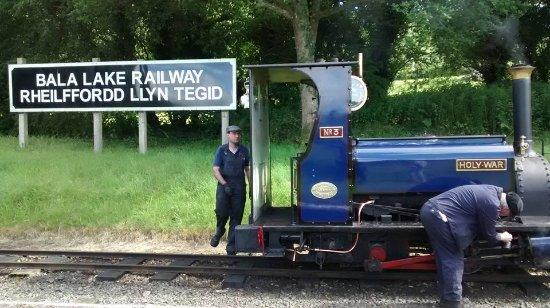 Llanuwchllyn, UK: Train stopped at Bala Lake Station