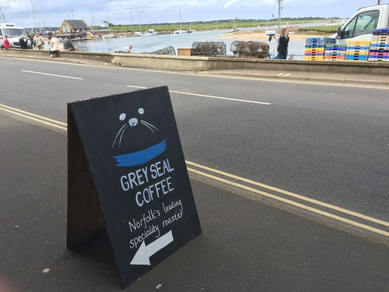 Grey Seal Coffee Picture Of Grey Seal Coffee Wells Next