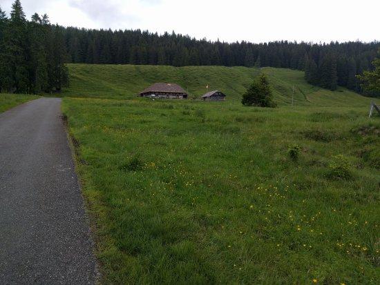 Stalden, سويسرا: Sicht von der Terrasse