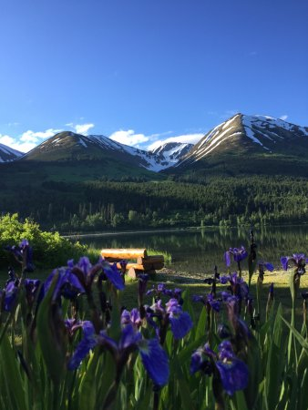 Summit Lake Lodge: Pretty flowers everywhere!