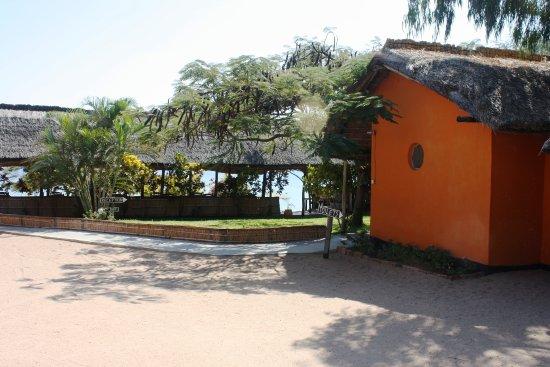 Gecko Lounge Foto