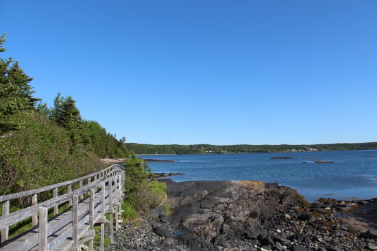 Eastport, Kanada: High Tide Trail - short boardwalk within walking distance from Inn By the Sea