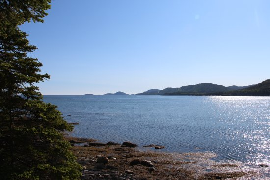 View from the small beach close to Inn By The Sea Inn in Eastport