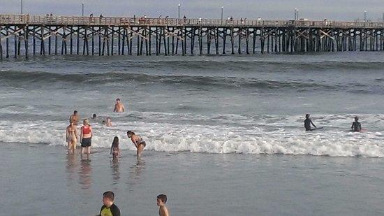 Seal Beach1