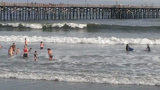 Seal Beach2