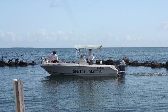Seabird Marina: Boat rental at Seabird Maria