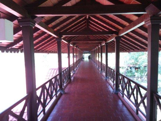 Cinnamon Lodge Habarana: Nature and man in good combination