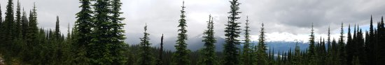 Mount Revelstoke National Park : 20160703_114257_large.jpg