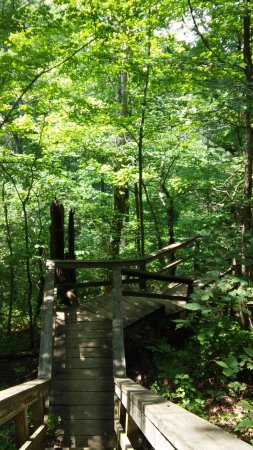 Clifty Falls State Park 사진