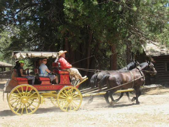 Wawona, CA: Wagon Ride, Pioneer Yosemite History Center, Yosemite National Park, CA