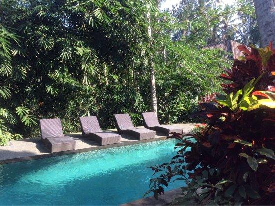 Photo2 Jpg Picture Of The Bali Shanti Villa Ubud Tripadvisor