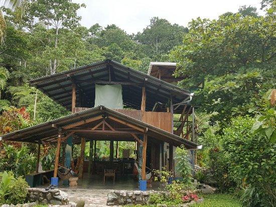 Osa Rainforest Rentals: 20160628_110929_large.jpg