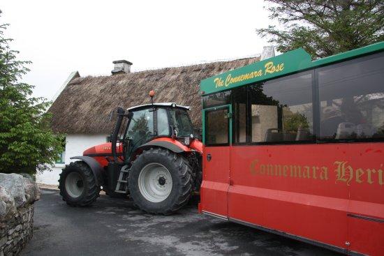 Dan O'Hara's Homestead Farm: Martin towing the 'bus'.