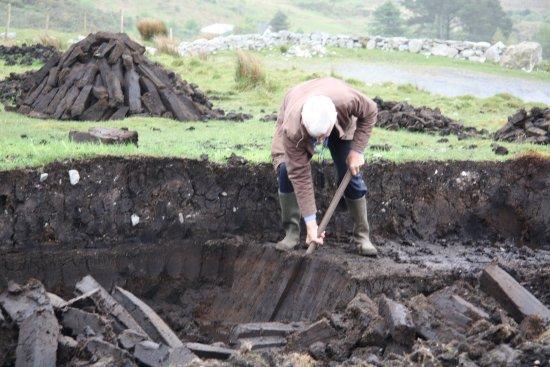 Dan O'Hara's Homestead Farm: Digging the peat.