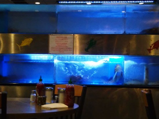 Sinh Sinh Restaurant: Fresh Seafood