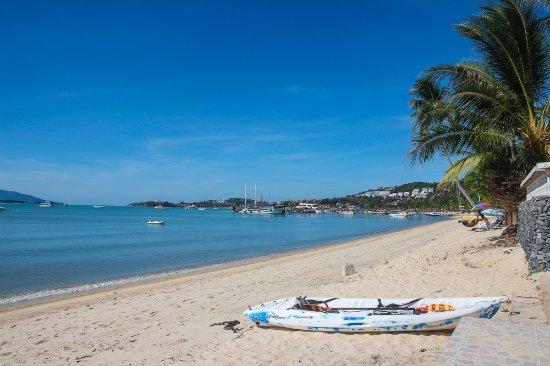 Bangrak Samui Beach Resort: Beachfront