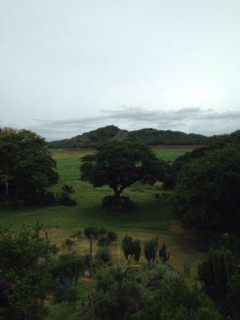 Rincon de la Vieja Lodge: photo0.jpg