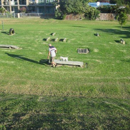 Whakatane, Nowa Zelandia: Dog excercise area with agility course