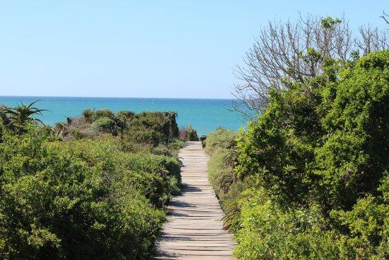 Cristal Cove Guesthouse & Backpackers : Caminho para a praia