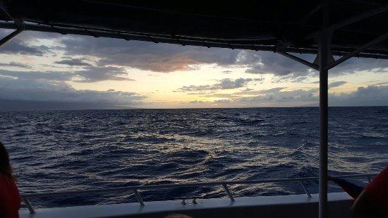 Kaanapali Ocean Adventures: 20160704_191138_large.jpg
