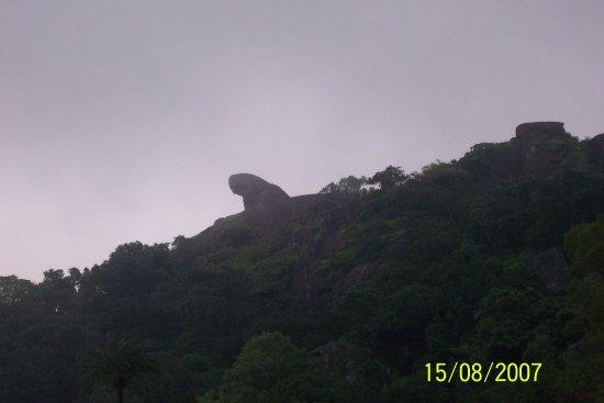 Sirohi, Inde : Toad Rock