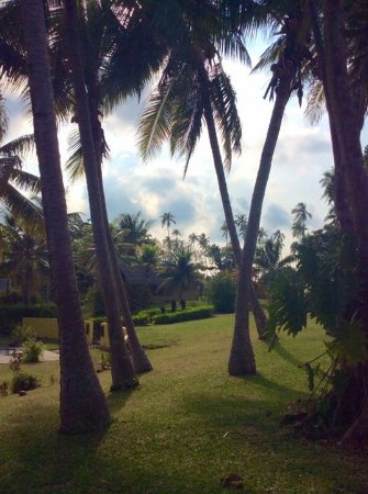 Aore Island Resort: Beautiful gardens