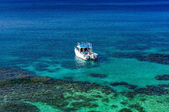 Βανούα Λέβου, Φίτζι: The Remote Resort Snorkel Boat 2.0