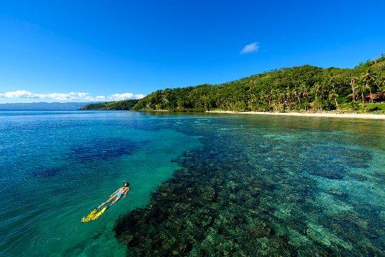 Βανούα Λέβου, Φίτζι: The Remote Resort House Reef Snorkel
