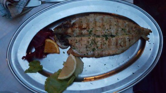 Taverna dei Capitani: Grilled fish