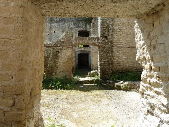 Baia Archeological Park : AMP Baia Centro Visite - Ass. Fillirea