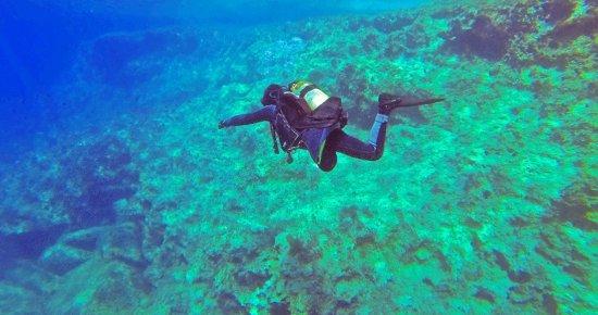 Palma Diving