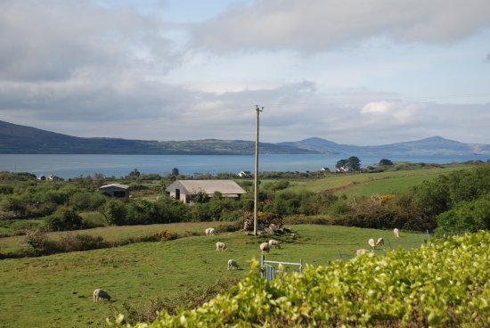Carbery Cottage Guest Lodge: Views