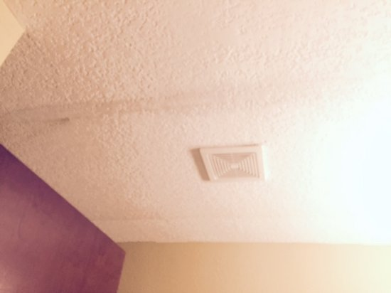 Arkadelphia, AR : More of the ceiling stains