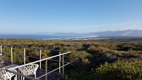 Grootbos Private Nature Reserve: View from a Forest Lodge suite with Walker Bay in the background
